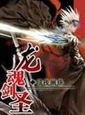 《龙魂剑圣》作者:暗夜幽殇