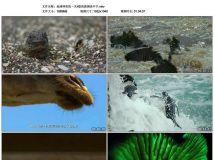 2017年国产8.2分记录片《地球神奇的一天》HD高清国语中字