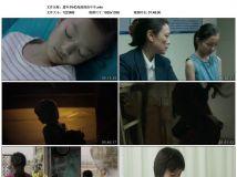 2017年国产8.5分剧情片《嘉年华》HD高清国语中字